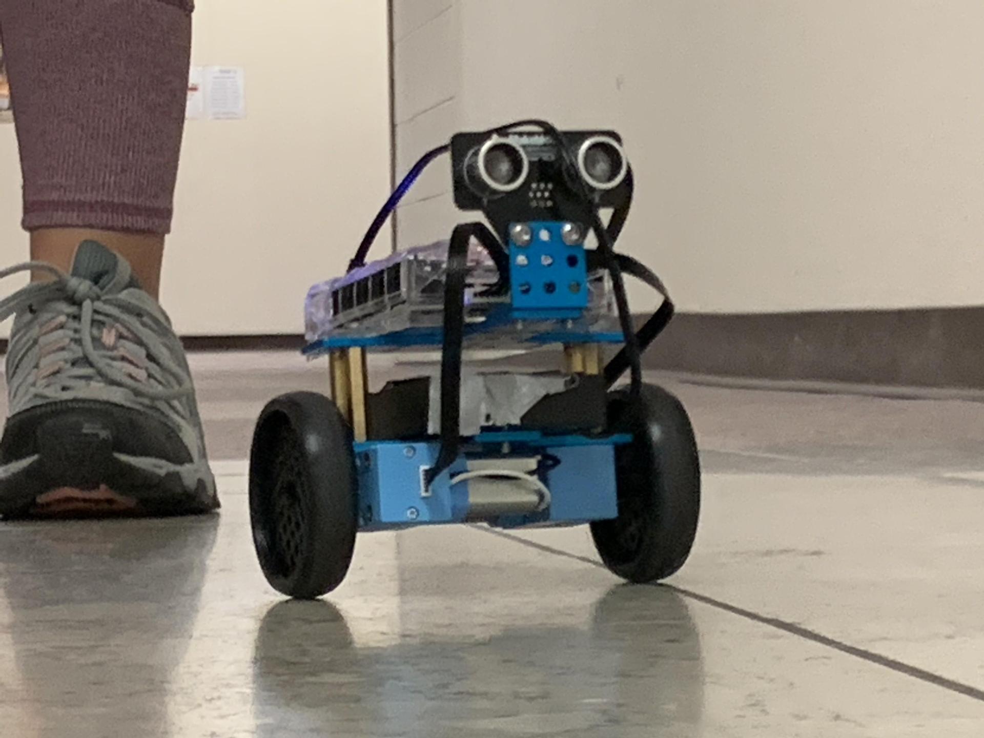 Qubit Queens - Dragons Who code - Robotics