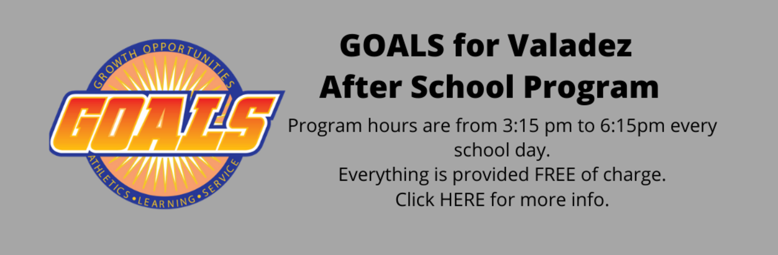 GOALS  after school program
