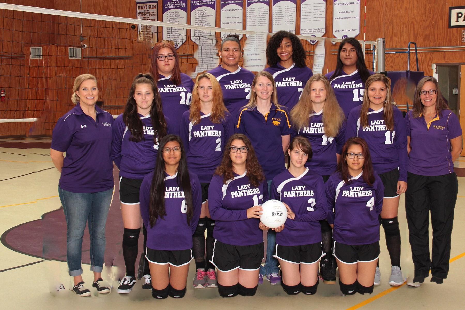 HS volleyball team