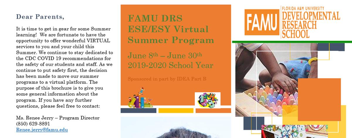 Summer Program Graphic