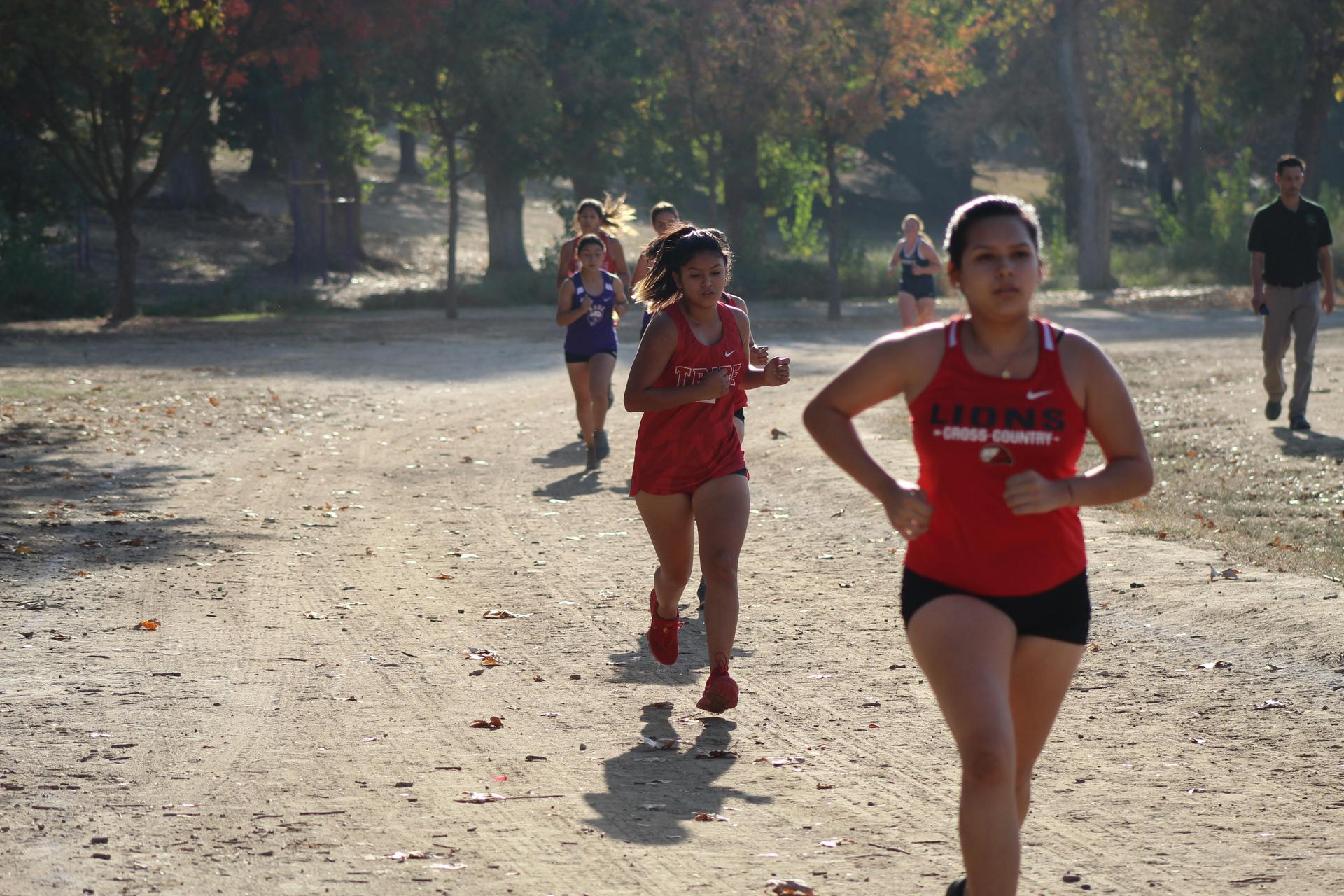 Varsity Girls running at the NSL Cross Country Championships.