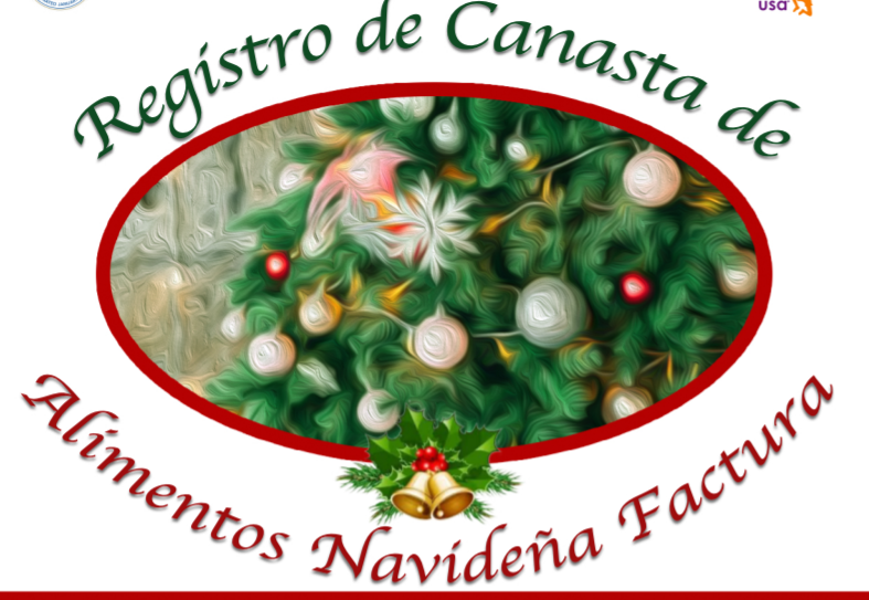 Registro de Canasta Navidena