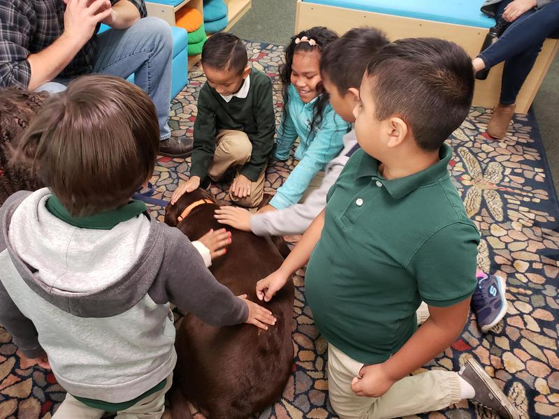 TheraPaws: A New Approach to Reducing Stress and Reinforcing Social-Emotional Learning in the Classroom Thumbnail Image
