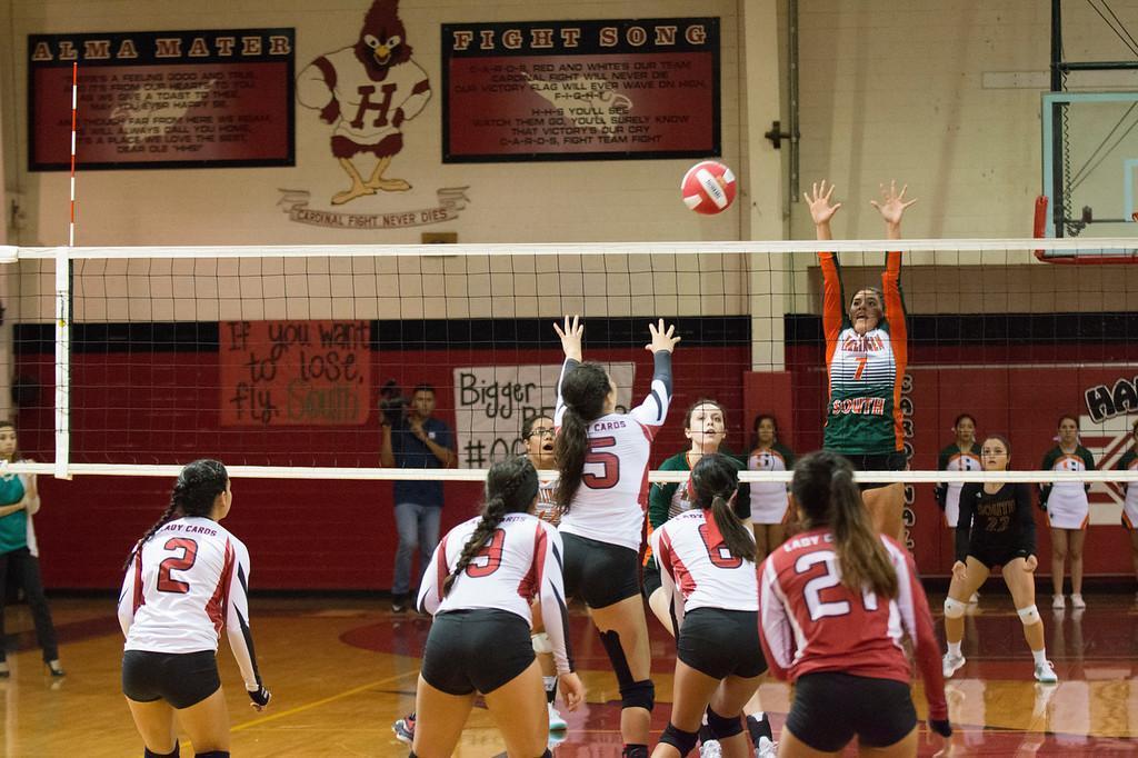 Bird Bowl Volleyball