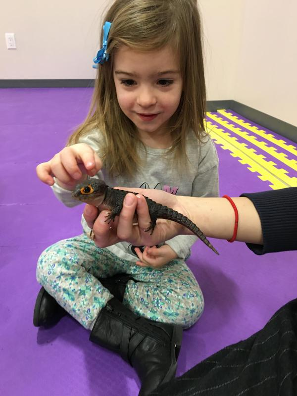 Fostering Curiosity and Compassion for Animals in our Youngest Students Featured Photo