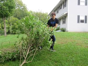 Students helped clear away brush, limbs, weeds and small trees along the riverbank.