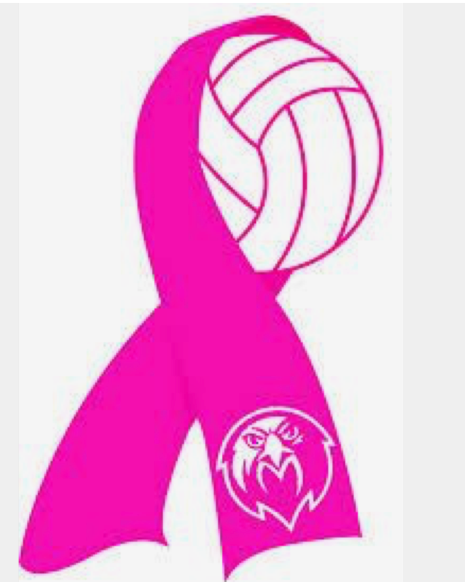 5th Annual Dig Pink Volleyball Game Oct. 9th Image