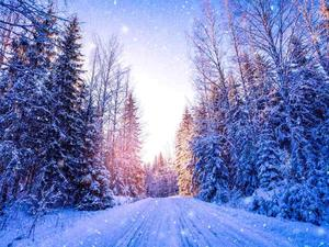 where_to_travel_in_december_snow_finland_holidayme_505354720.jpg