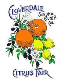 Citrus Fair logo