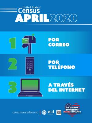 Census Poster 4 - Spanish