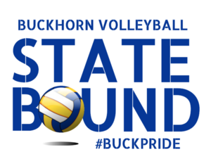 State Bound Volleyball.png