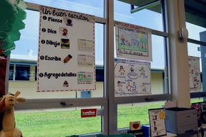 Dual Immersion classroom posters