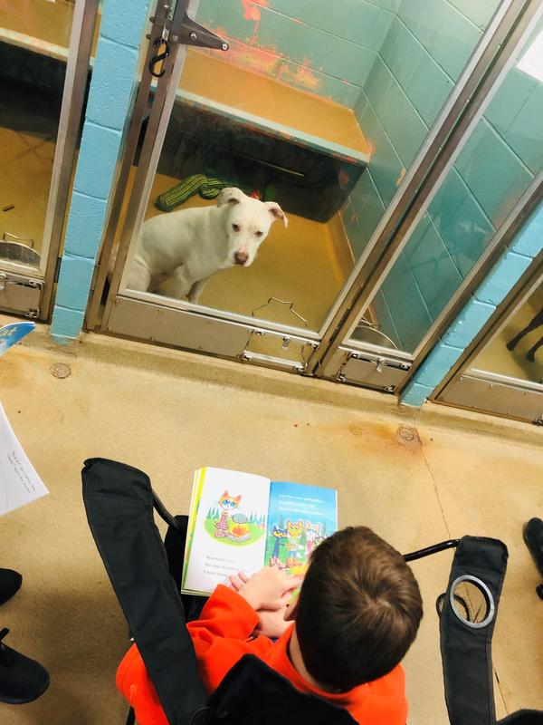 student reading to dog
