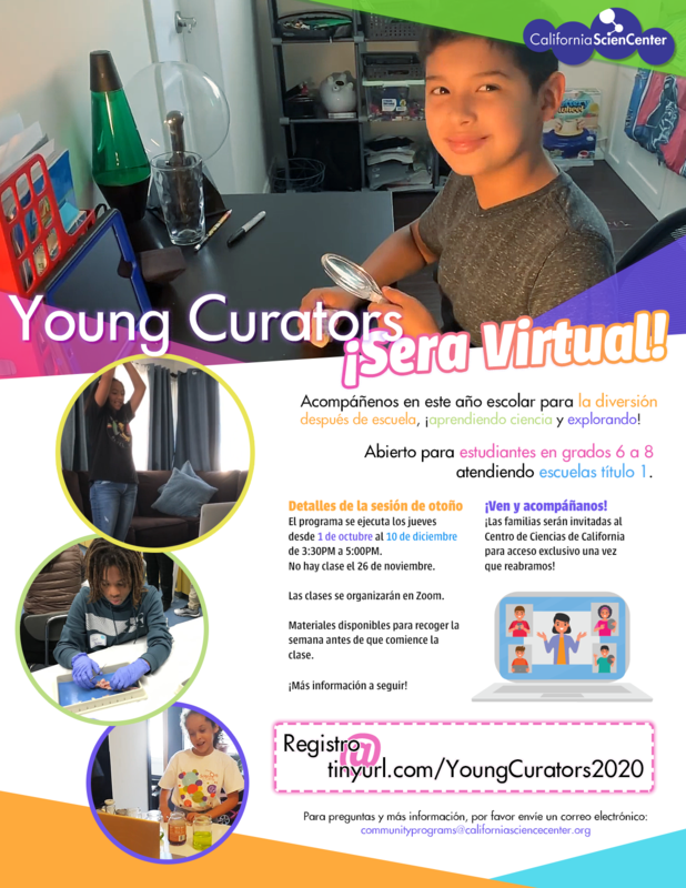 Young Curators 2020 after school program/programa Young Curators 2020 Featured Photo