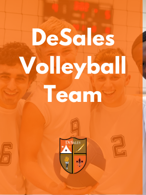 SUPPORT DESALES VOLLEYBALL