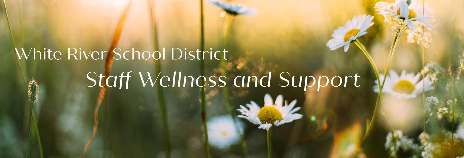 WRSD Staff Wellness and Supports