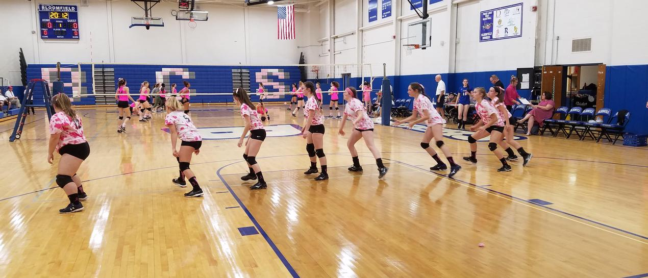 Girls Volleyball team in pink for digs pink event