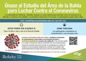 Enlace al sitio web español