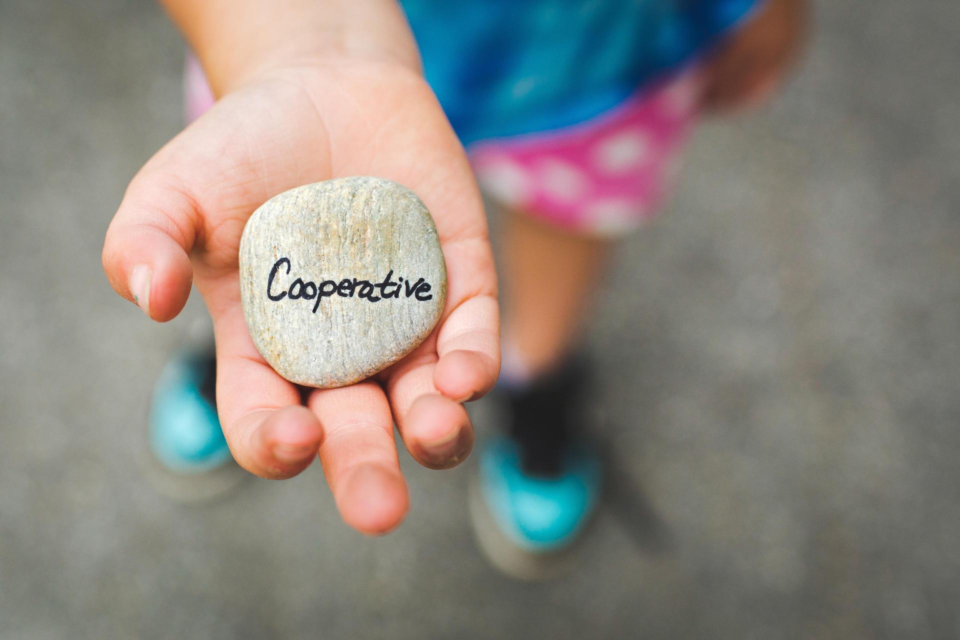 Child hand open holding stone with the word cooperative written on it
