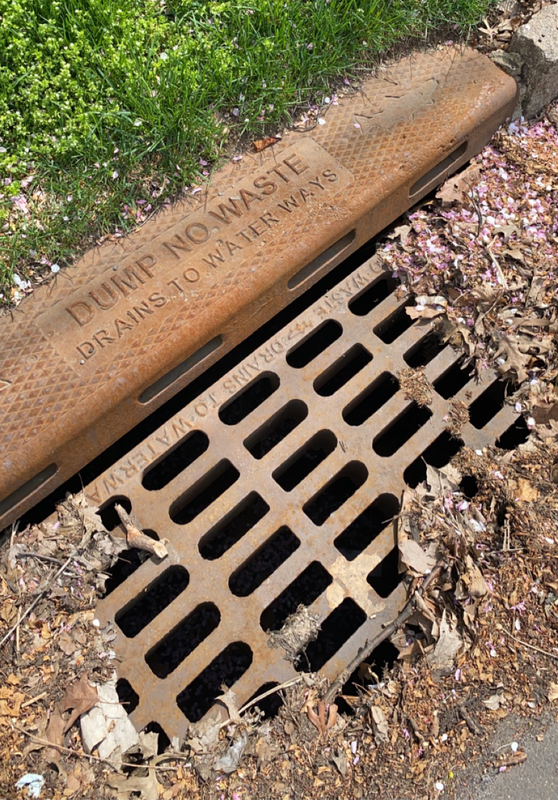 Photo of an debris around a storm drain.