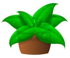 Sanderlins Spring Plant Sale Featured Photo