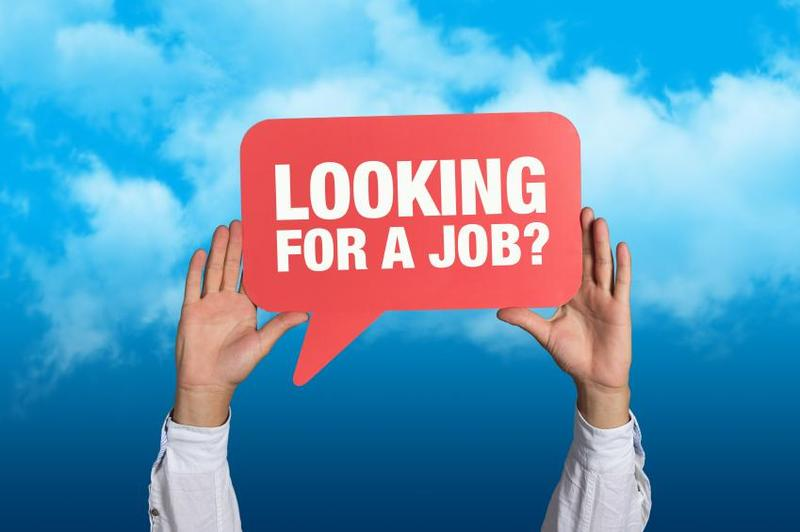 Job Openings Featured Photo