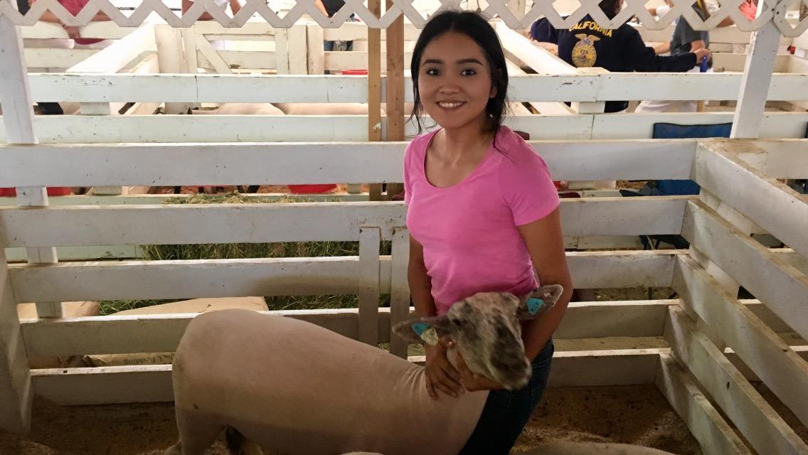 FHS student with lamb