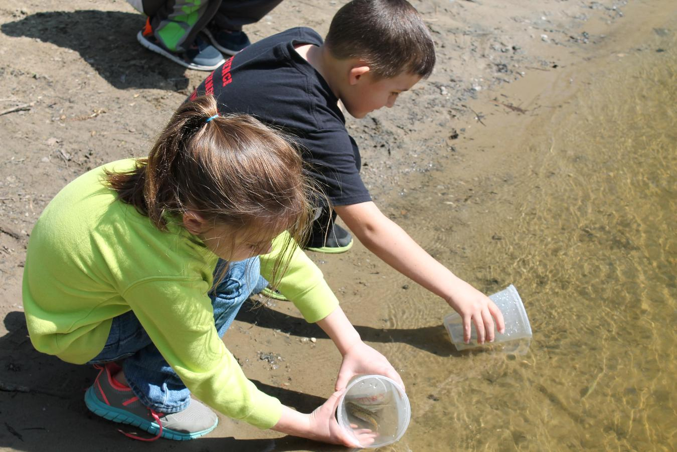 Dieck students taking water samples