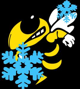 FASD BEE SNOWING