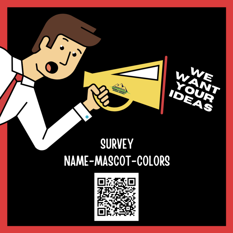 TCSD survey for school name, colors, and mascot