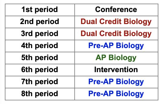 Daleo's schedule