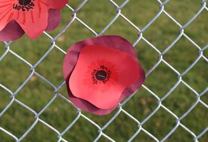 Hand made red poppies created by cottonwood third graders
