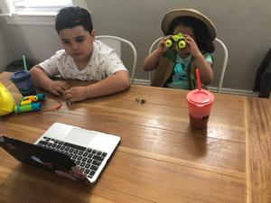 brother and sister having virtual field trip to Bronx Zoo