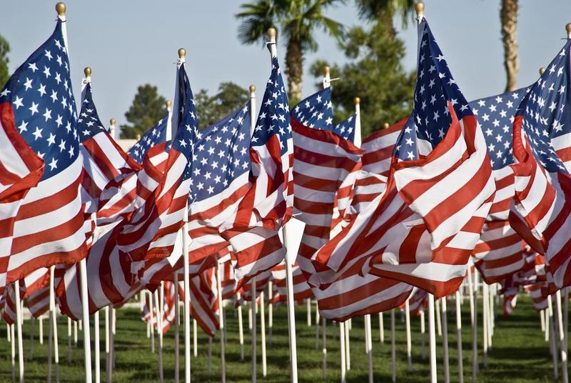 Field of Flags Image