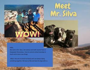 Mr. Silva