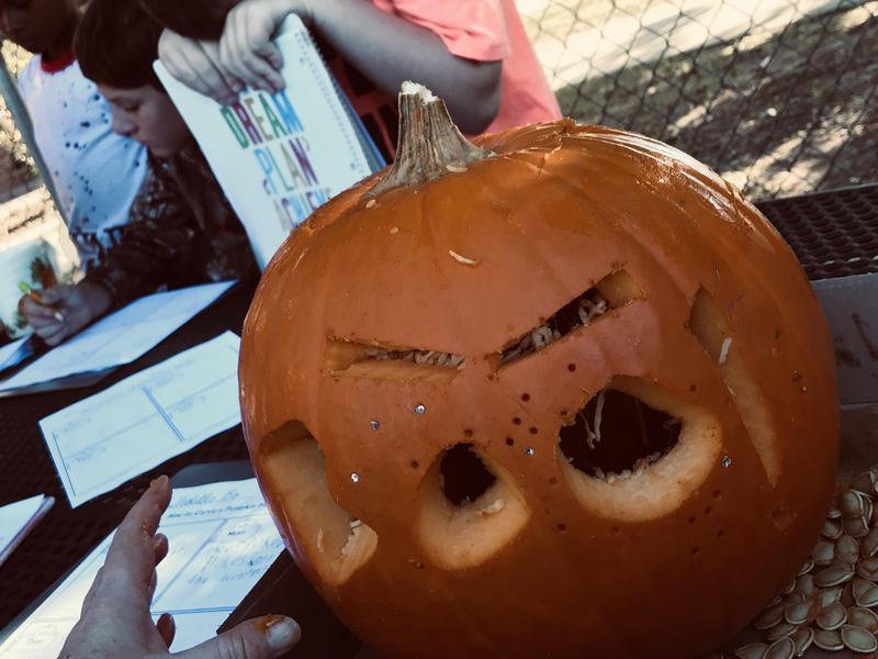 Mrs. Harper's Pumpkin Activity Featured Photo