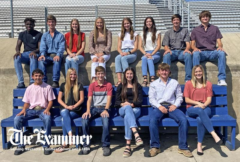 Congratulations, Homecoming Royalty! Featured Photo