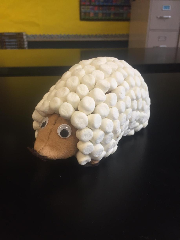 Marsh-mole-ow