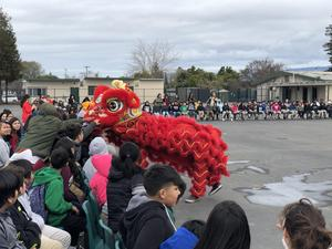 Students try to pet the lion during the lion dance performance.