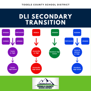 DLI Secondary Transition graphic