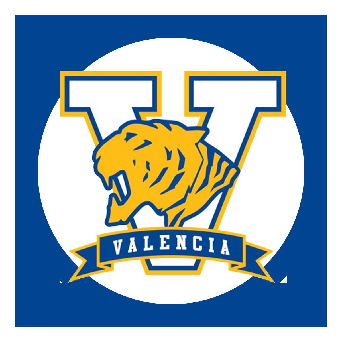 VHS round logo