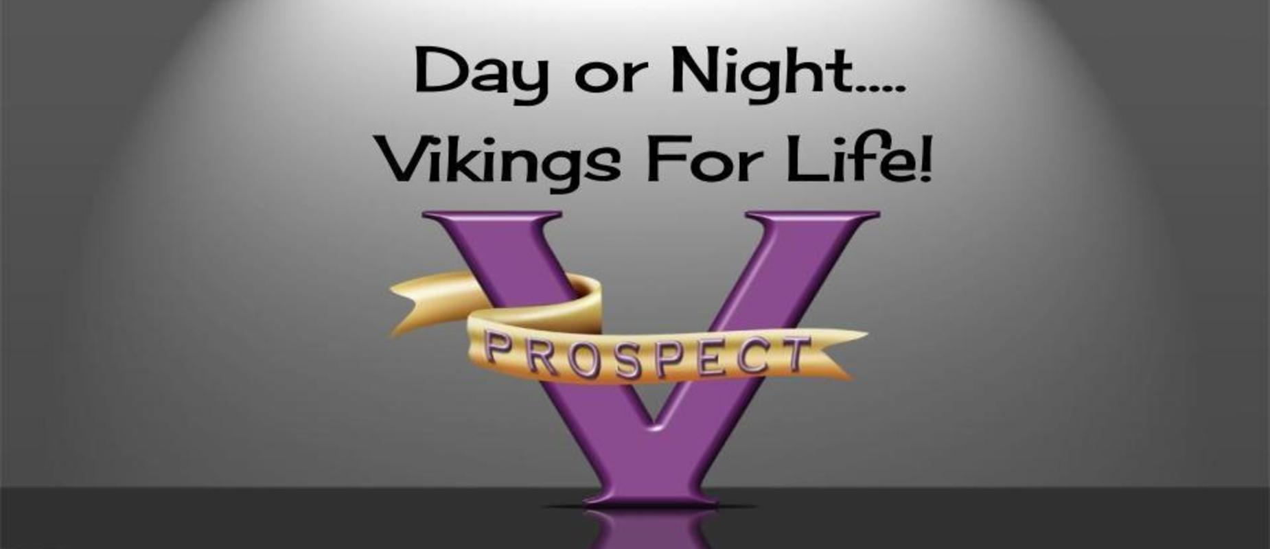 Day or night...Vikings for Life