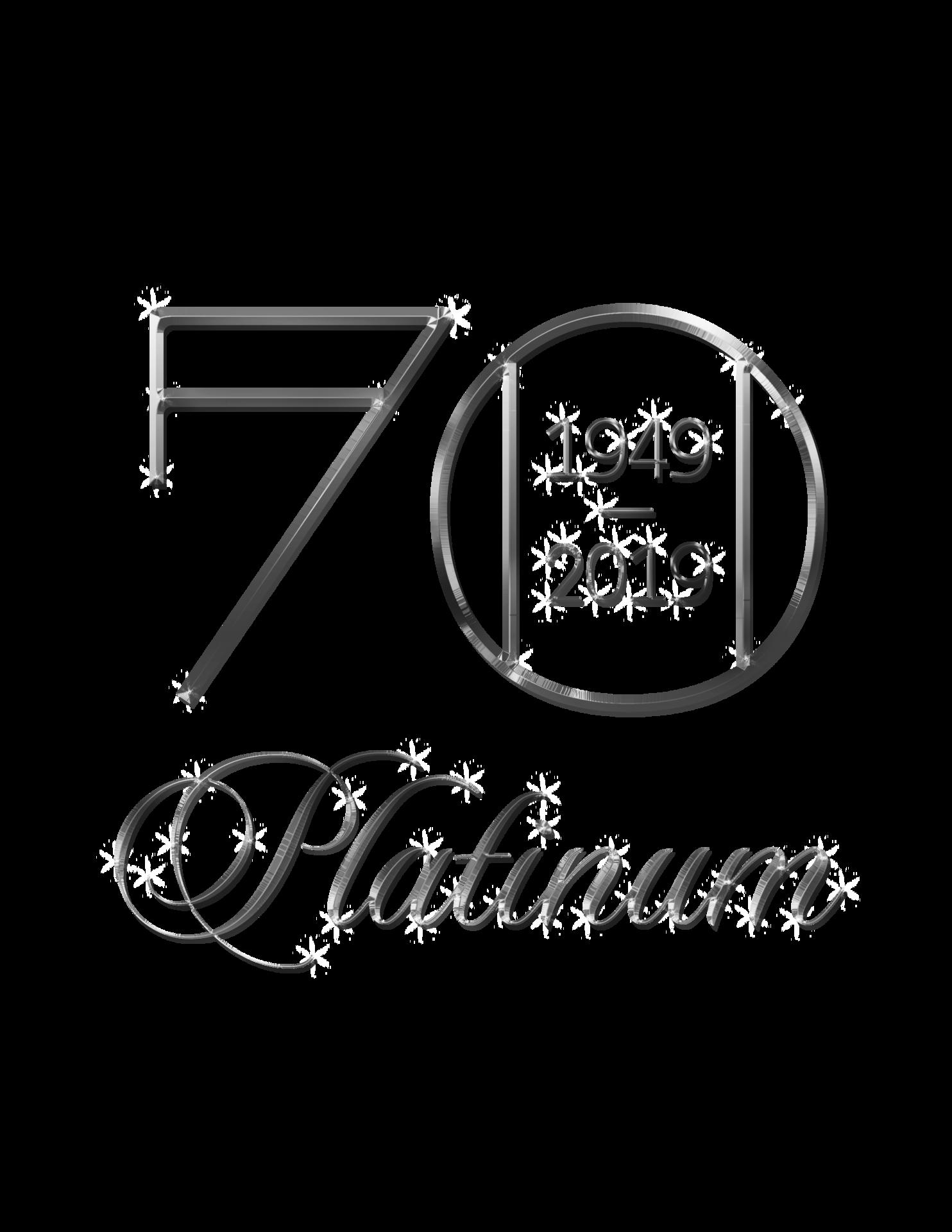 Platinum Auction