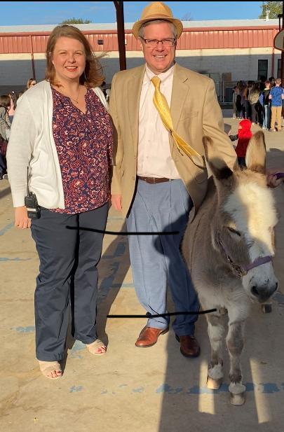 donkey4.jpg