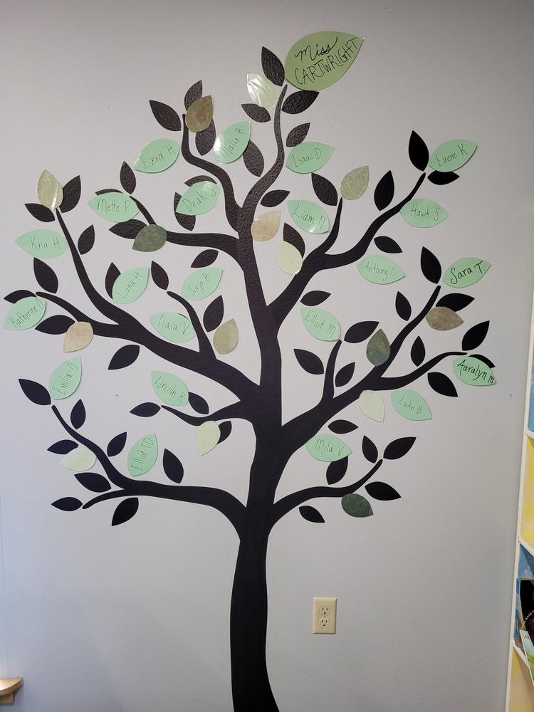 Our class tree.