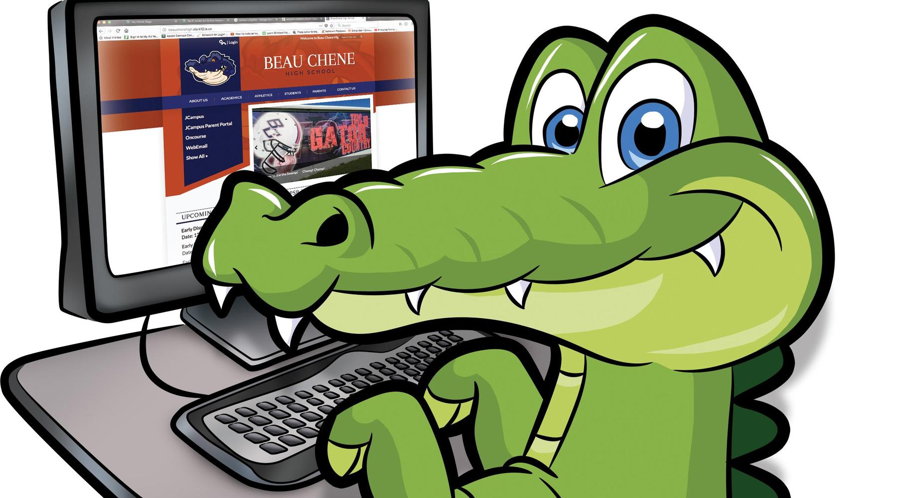 Gator at the computer looking at the website