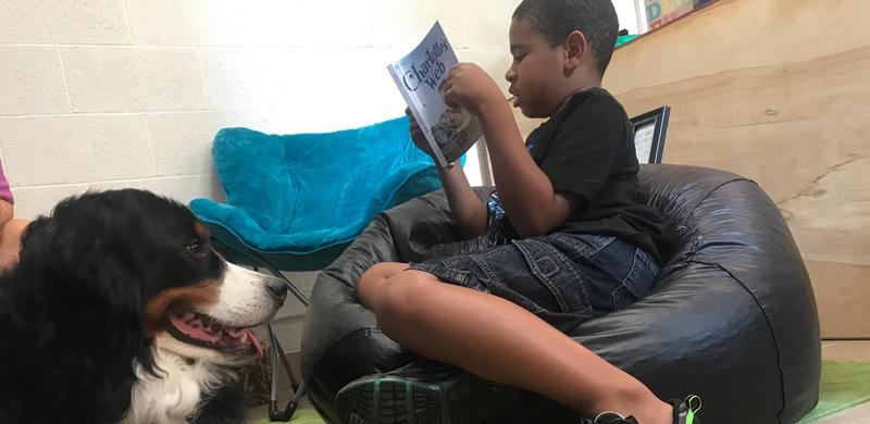 Man's Best Friend Helps Thomas Jefferson Students Read Featured Photo