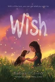 Wish by Barbara O'Connell