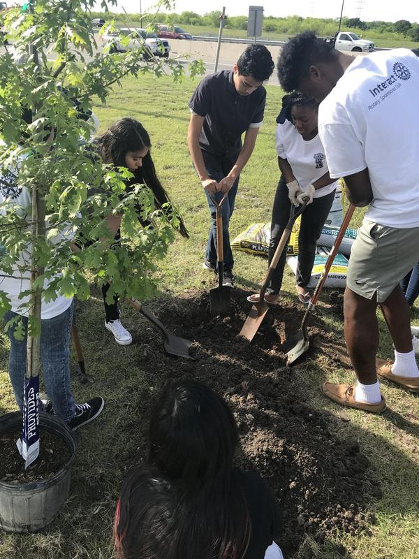 Tree planting by MNTHS Interact Club