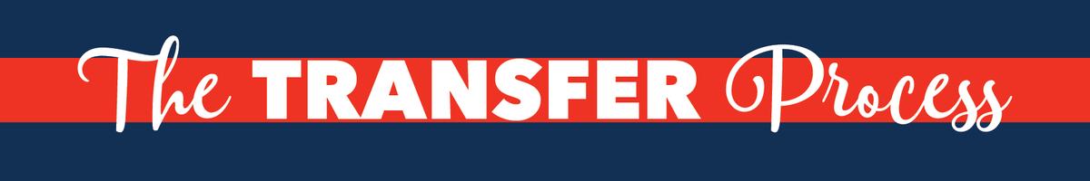 transfer-process-header